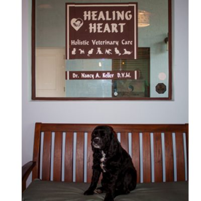 Healing Heart Veterinary Clinic